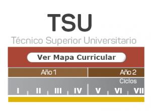 Mapa Curricular TSU