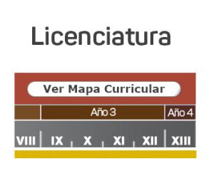 Mapa Curricular Licenciatura